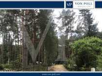 Waldgrundstück unweit des Finowkanals