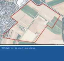 Bauerwartungsland im Neubaugebiet Bauschheim Eselswiese