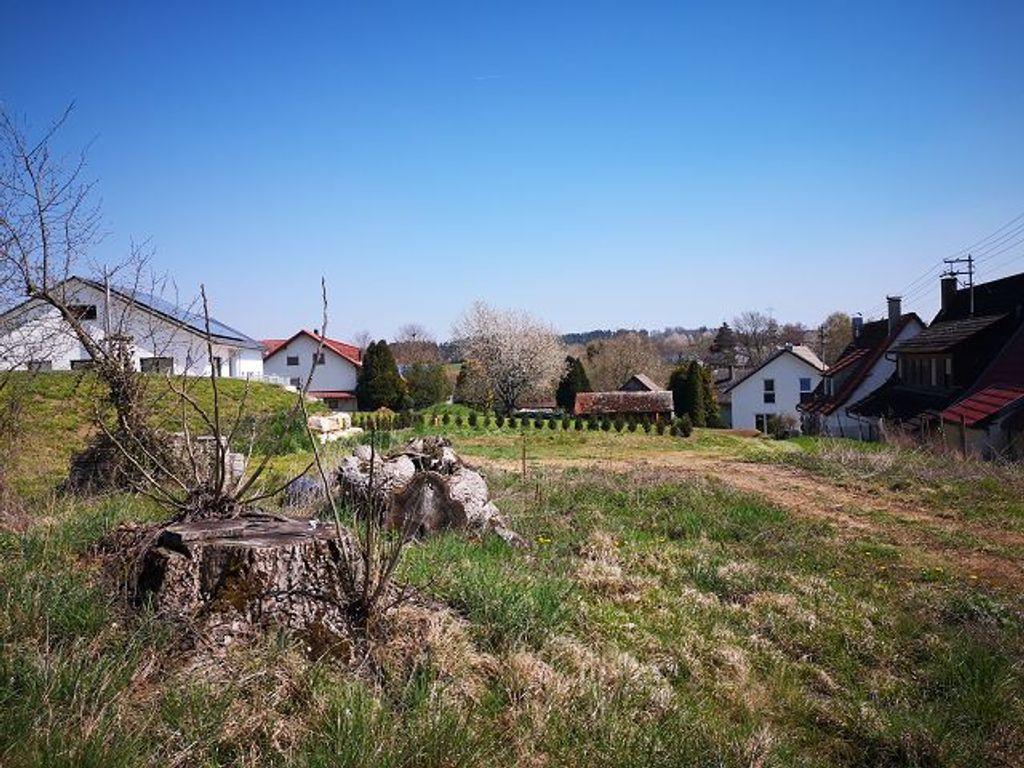 Ausblick zum Garten