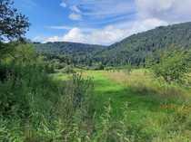 Vielseitig nutzbare landwirtschaftliche Fläche in