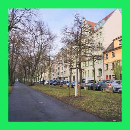 ... Einmaligkeit erleben: es muß Gründe geben, warum Menschen Glück empfinden können ... in Stadtpark / Stadtgrenze (Fürth)