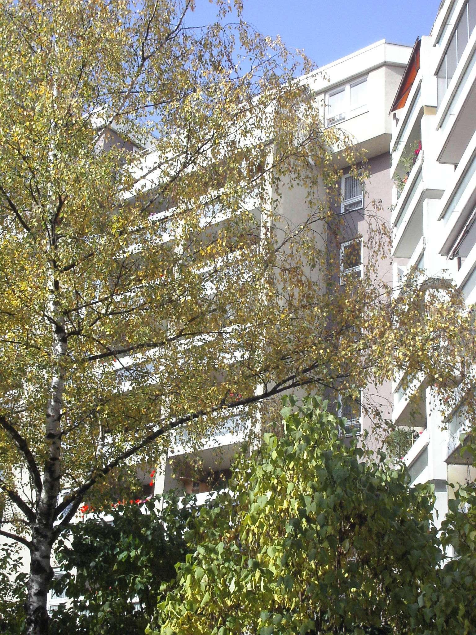 Gut geschnittene 2-Zimmer Wohnung mit Balkon zu vermieten in Augsburg-Innenstadt