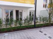2-Zimmer-EG-Wohnung mit Balkon Keller und