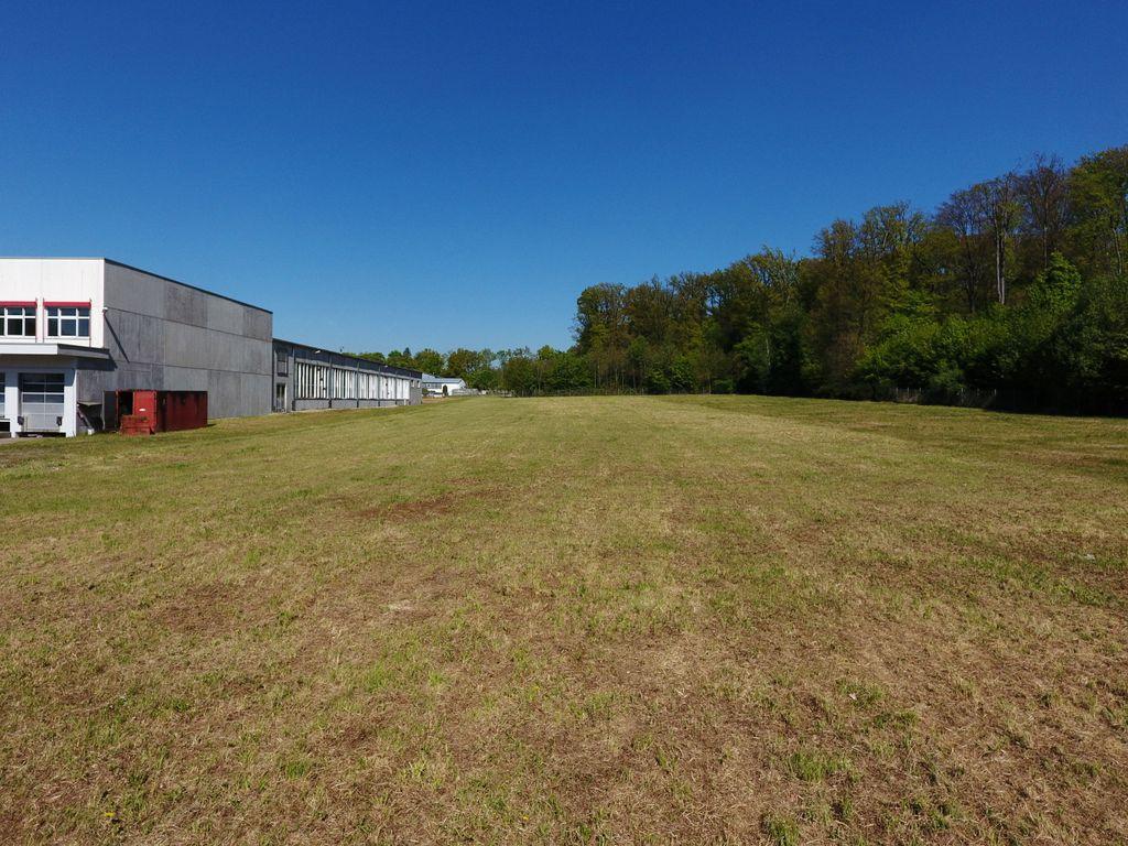 Bauplatz ca. 12.000 m²