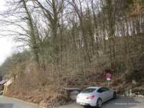 Wochenendgrundstück mit altem Baumbestand