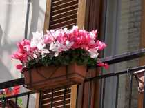 3 ZKB möbliert in top Wohnlage - kostenfrei zu vermieten-