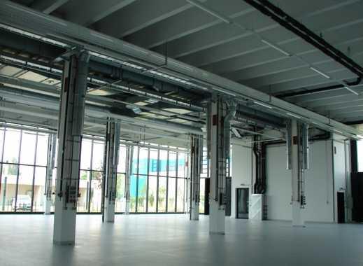 Zentrum für Photovoltaik und Erneuerbare Energien - Produktionshalle
