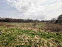 Grünfläche in Wohngebiet für Investoren