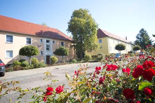 Wohnen im Mozartviertel Rötha