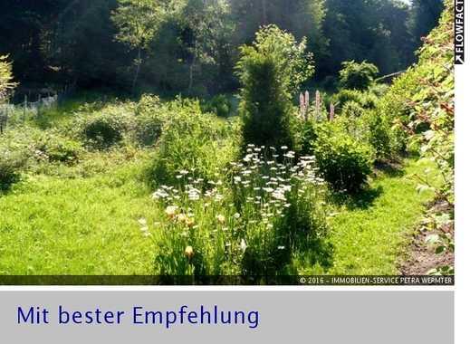 Idyllisches  Grundstück in Hanglage mit direktem Zugang in den Teutoburger Wald in Oerlinghausen
