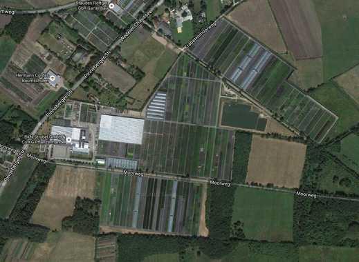 Gärtnerei mit umfangreichem Grundbesitz