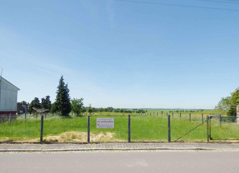 Mehltheuer, Baugrundstück für Einfamilienhaus mit wunscheschöner Aussicht - Grundstück zum Kauf in Hirschstein