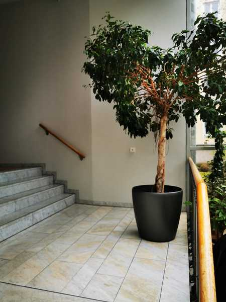 Private Apartment in gated building close to Leopold Str in Maxvorstadt (München)