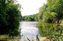 Eigener See mit ufernahem Baufeld