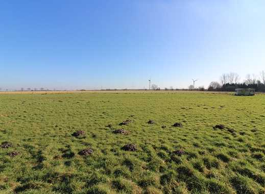 Grünlandfläche / Weideland in Bremen-Farge zu verkaufen