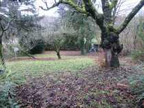 Bild 061/24 Grundstück mit 1-2 Familienhaus in HN-Ost, Nähe Pfühlpark