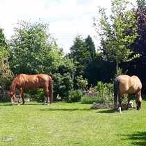 Refugium für Pferdeliebhaber vor den