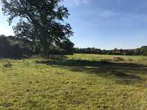 Die ländliche Idylle 1600m² Grundstück