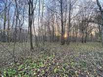 Schönes Waldgrundstück auf 1 456