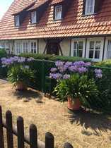 3-Zimmerwohnung im Luftkurort Sontra - Wohnberechtigungsschein