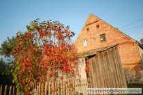 Bild Altes Landhaus nahe Badesee im Spreewaldgebiet