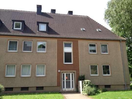 hwg - Übergangswohnung gesucht? Zetlich befristete 3-Zimmer Wohnung in der Südstadt!