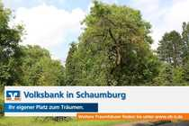 Baugrundstück - Sauerbruchstraße