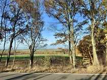 Bewirtschaftete Landwirtschaftsfläche