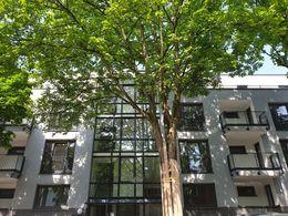 Casa Amadeus-Mozartstraße 33