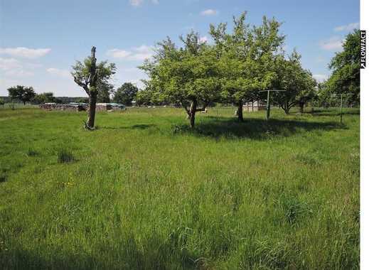 Wunderschönes, ca. 2.700 m² großes  und sonniges Garten-/Freizeitgrundstück, gut anfahrbar!