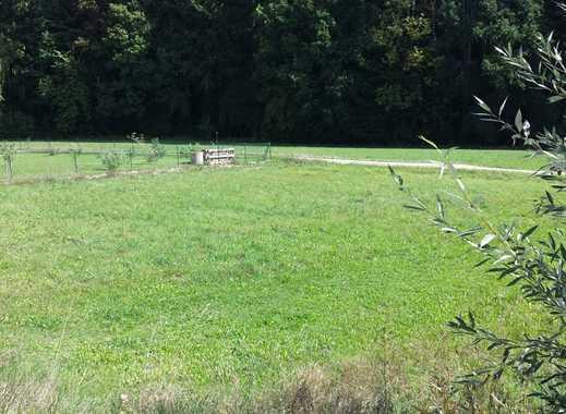 Gut geschnittenes Grundstück in ruhiger Waldrandlage