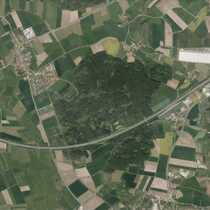 Bild Waldgrundstück in Herrieden!