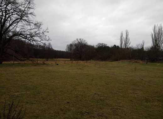 Exklusives Grundstück für Individualisten direkt am Naturschutzgebiet