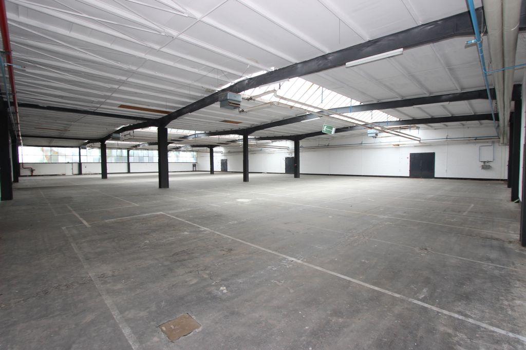 Halle 2 ca. 1.575 m²