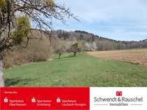 Grünland Freizeitgrundstück in Büdingen