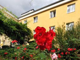 Garten und Rückansicht