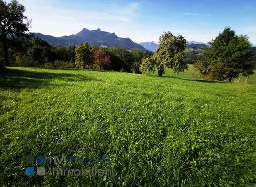 Bildschönes Grundstück am Samerberg mit 960 m² - noch kein BAU-Grundstück!!