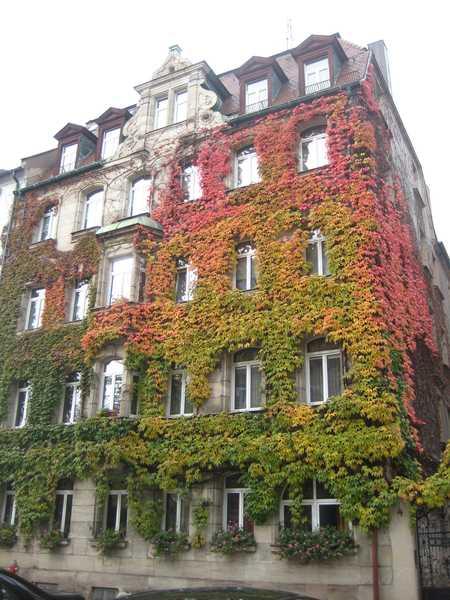 Stilvolle 3,5-Zimmer-Wohnung in Jugendstilhaus in Nürnberg/Gostenhof in Bärenschanze (Nürnberg)