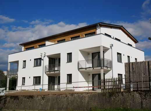 Viecht/Landshut *ERSTBEZUG* - schicke 3 Zimmer Wohnung mit sonnigen Balkon