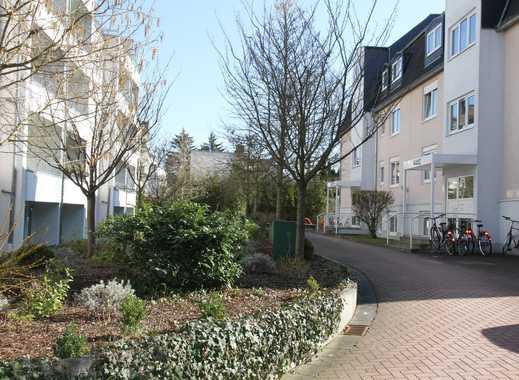 4-Zimmer-Wohnung *Erstbezug nach Sanierung* am Grüngürtel / Oberrad
