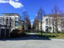 8 vermietete Wohnungen in Dresden