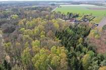 27 300 m² Mischwaldfläche am