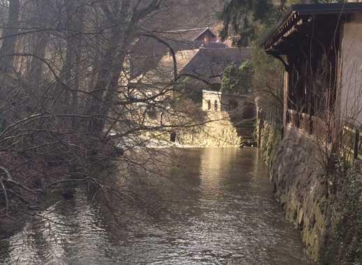 Schöne, lichtdurchflutete 2-Zimmer-Wohnung im historischen Mühlenanwesen an der Weschnitz