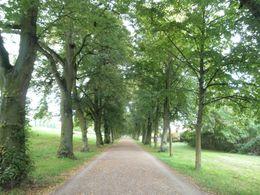 Park Schönbusch zu Füßen