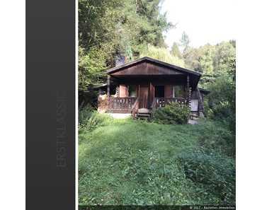 Ferienhaus im idyllischem Pfälzer Wald - einfach abschalten und erholen! in Trulben