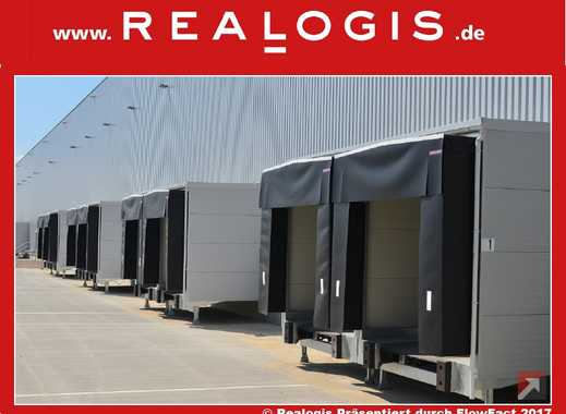 halle mieten in rheine steinfurt kreis lagerraum. Black Bedroom Furniture Sets. Home Design Ideas