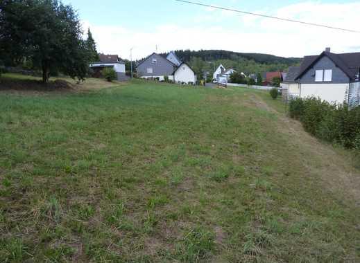 Großes Baugrundstück in Netphen-Eckmannshausen