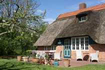 Historisches Reetdachhaus mit