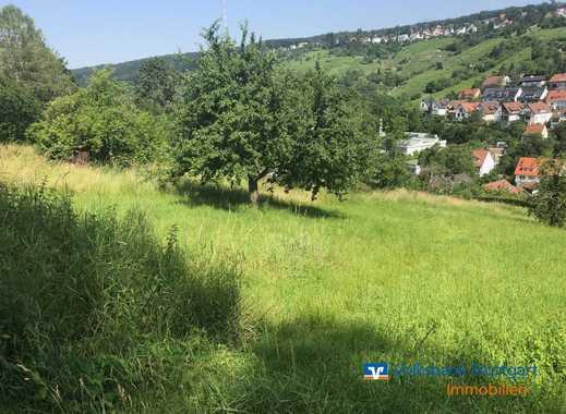 Gartengrundstück zwischen Sillenbuch und Rohracker
