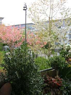 Stilvolle u. ruhige Wohnung zur Miete in Taufkirchen in Taufkirchen (München)